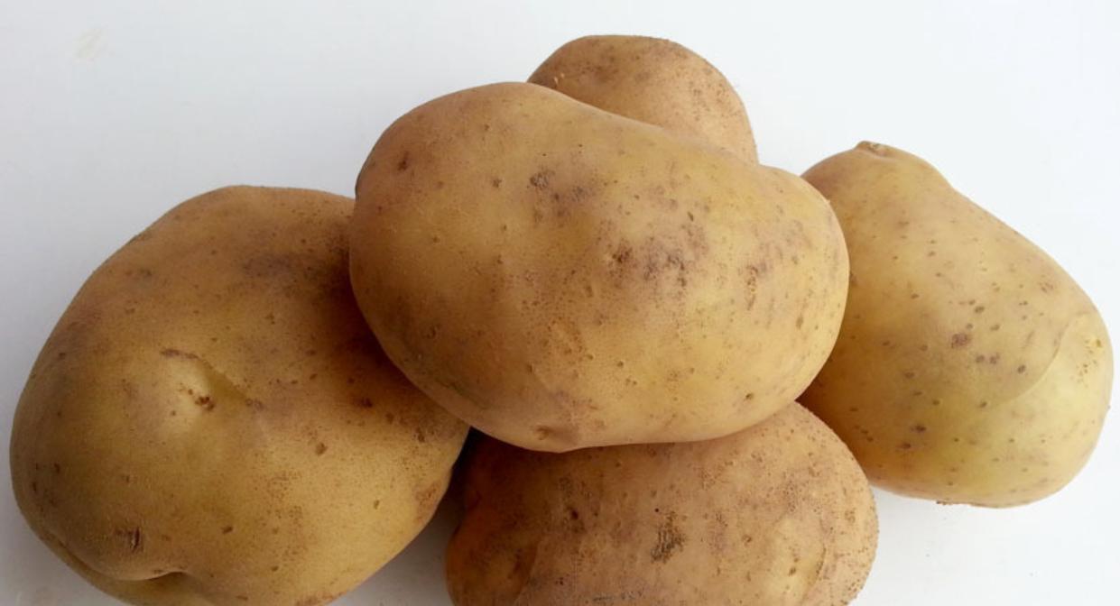 Patata Granel